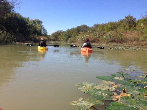 Guided kayaking on the McWhorter Creek