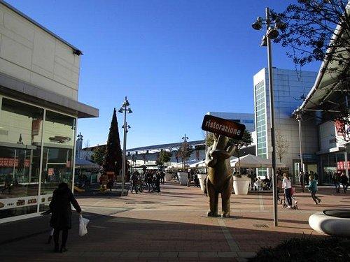 l'orso e l'albero di Natale