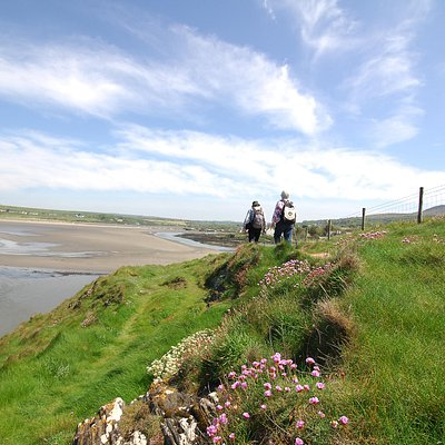 The Pembrokeshire Coast Path near Newport