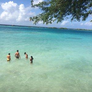 Mergulho em Mango Alto
