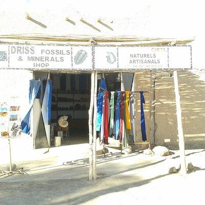 driss fossils shop merzouga