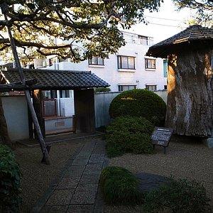 庭園 庭には樹齢500年の彫刻用の大木が