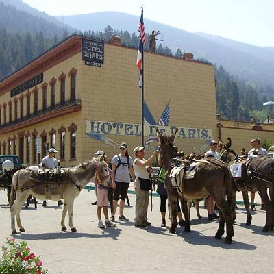 The annual burro race occurs every Saturday morning of Memorial Day weekend.
