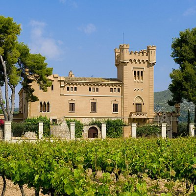 Torre del Veguer - Vi de Finca / Vino de Finca / State Wine