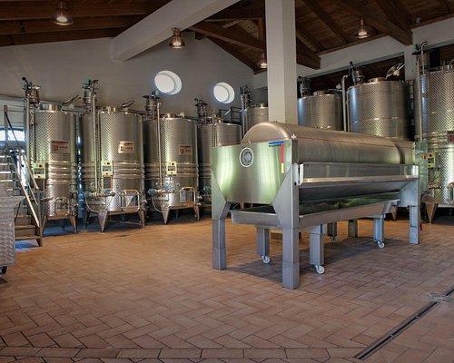 Making wine...