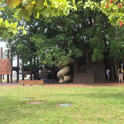 Figtree playground