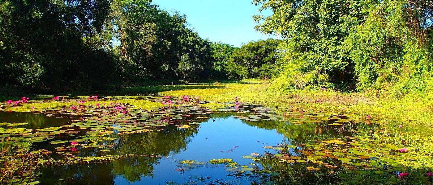 lake in Banteay Chhmar
