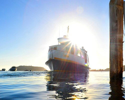 Palm Beach Ferries
