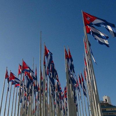 La forêt de drapeaux cubains
