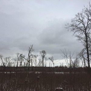Mahnomen Trail, Jan. 1, 2015