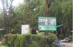 inside the zoo