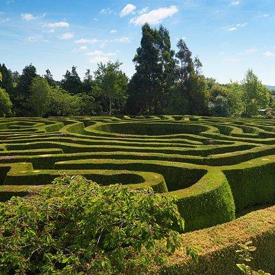 Greenan Hedge Maze