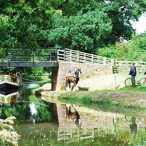 The horse-drawn barge, Tivertonian (Craig Saunderson)