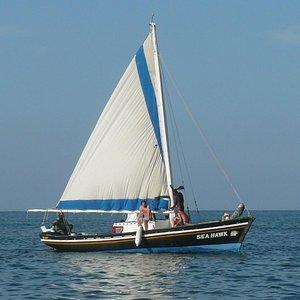Blackhawk Sailing