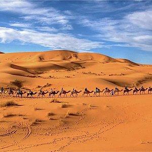 Morocco Camel Trekking by OriginalMoroccoTours.Com