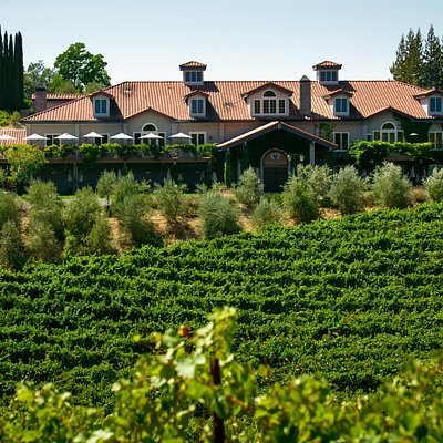 Silicon Valley's Favorite Winery