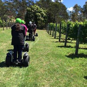 Segway Tasmania @ Puddleduck Vineyard