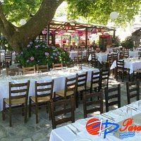 Taverna's Garden over the summer