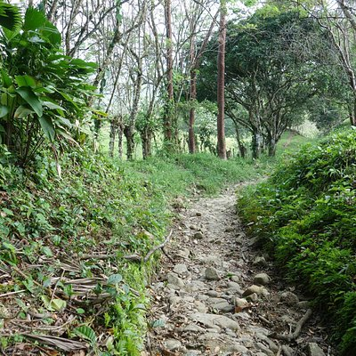 Spuren des Camino Real