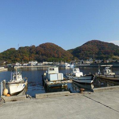 市場前漁港