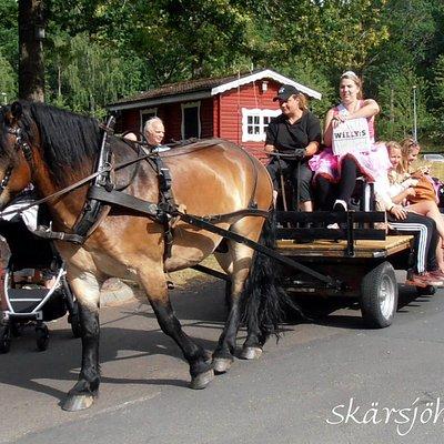 Möhippa med häst och vagn.