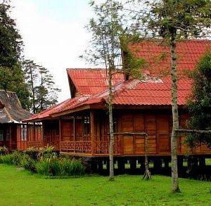 Rumah Kayu Agrowisata N8