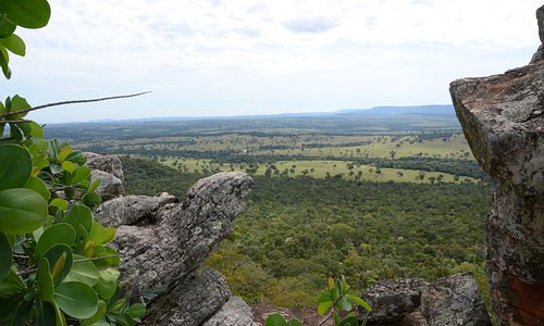 the view over the cerrado bush is very beautiful