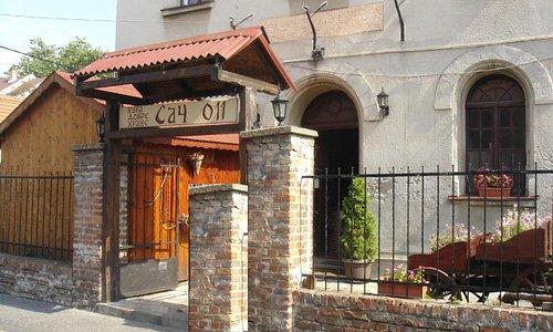 Sinagoga Zemun