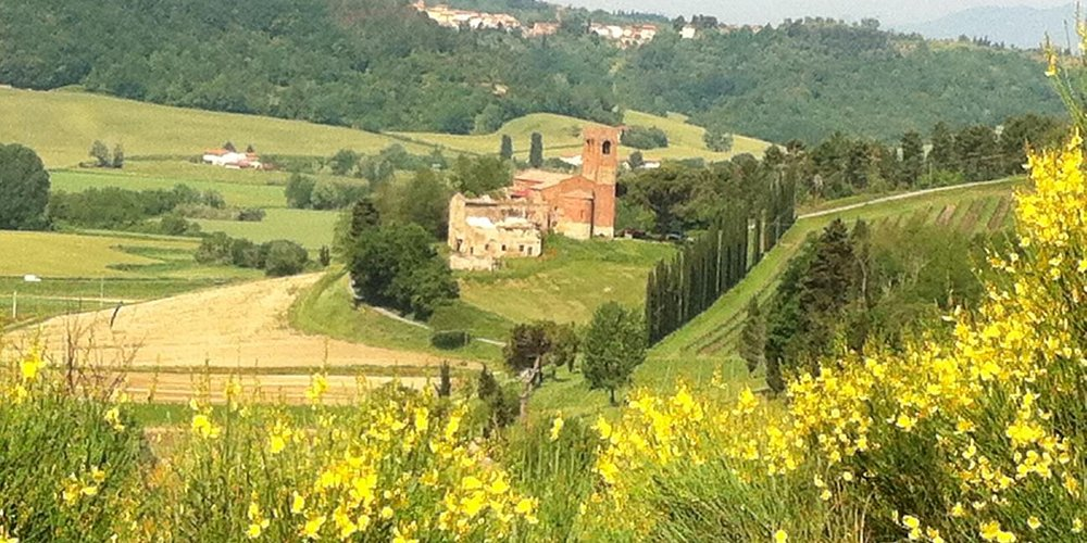 The location of one of our truffle hunting tours