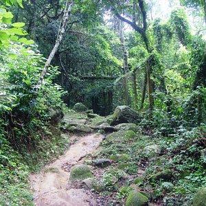 Muito boa a trilha