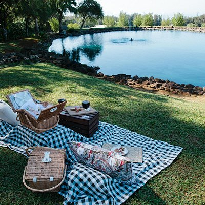 The Perfect Picnic at Charlie's Pond