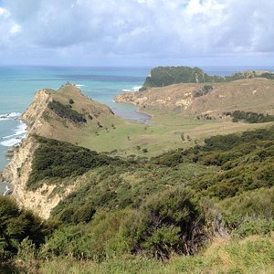 view from second lookout towards cooks cove
