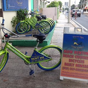 Daily Bicycle Rentals