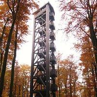 Der Aussichtsturm im Herbstwald