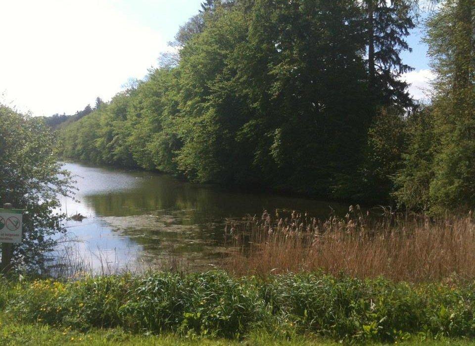 Parc de l'Abbaye - Liessies