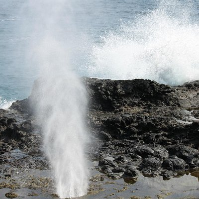 spectacular blowhole