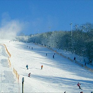 Nice place for skiers within Vienna city limits