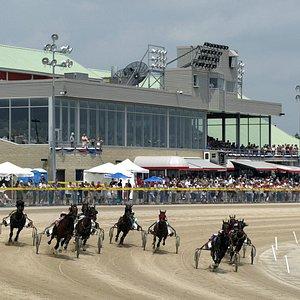 Live horse racing
