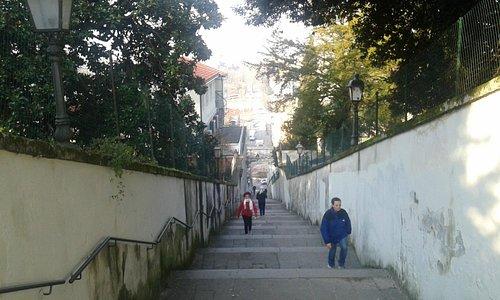 Salita verso il Monte Berico