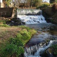 Sabie Falls feed