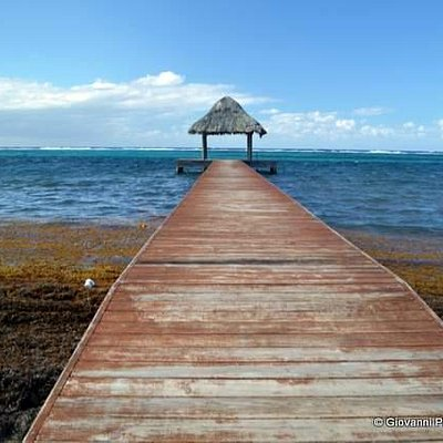 Murphy's Roatan Tours will drive you anywhere on the island!