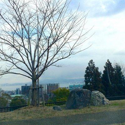 今日は曇りでしたが、近江大橋やプリンスホテル、ミシガンも見えました。