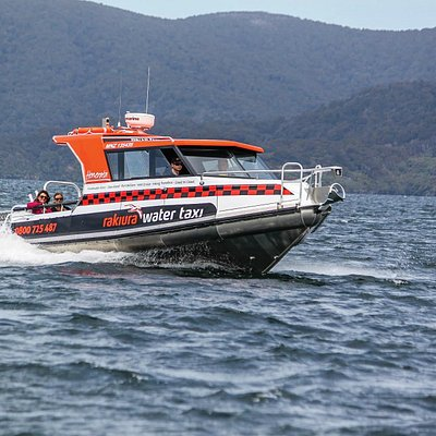 The Rakiura Water Taxi cruising through the Paterson Inlet, join us for a scenic tour