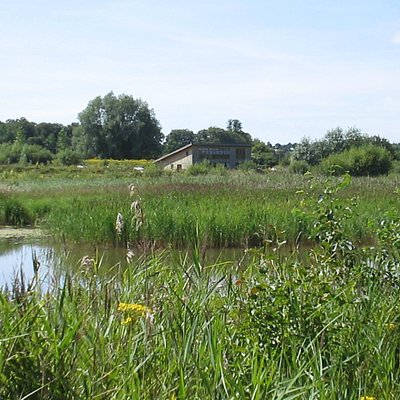 Lackford Lakes with the visitor centre in the distance