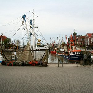 Hafen Neuharlingersiel 4