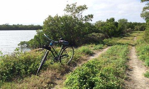 trail on Jack Island
