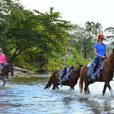 Riding through the river with Wise Mountain Trails