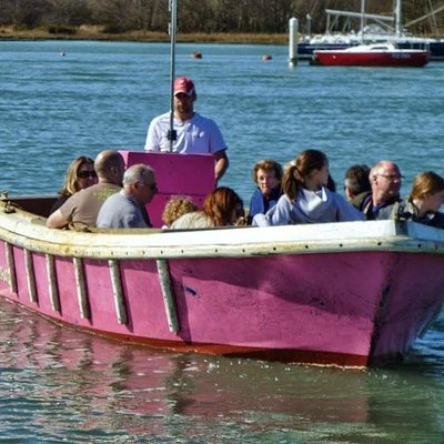 One of the Little Pink Ferry