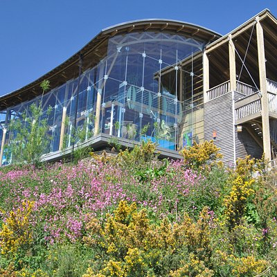 Welsh Wildlife Centre (c) Stuart Hall