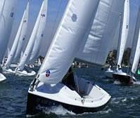 The Harbor 20 sail boats are fun and easy to sail!